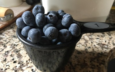 Blueberries: Why They're All the Rage