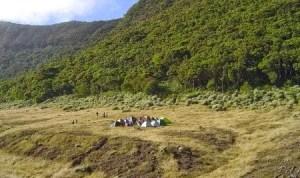 Camping di Alun-Alun