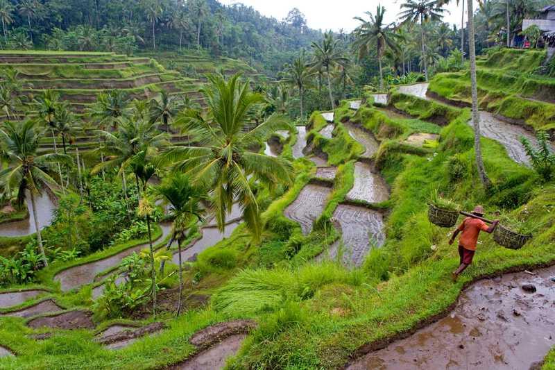 Kumpulan Gambar Pemandangan Indah di Indonesia Yang Bisa