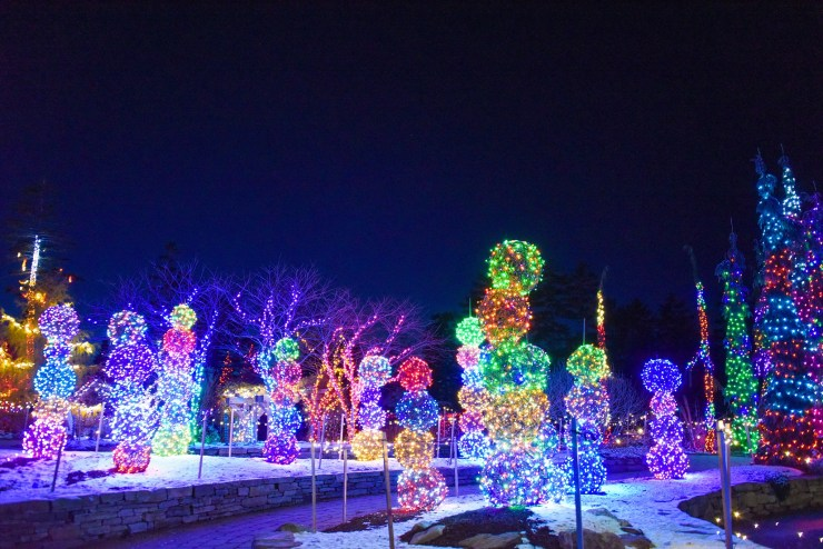 Photo of holiday lights at the Coastal Maine Botanical Gardens, Gardens Aglow Event.