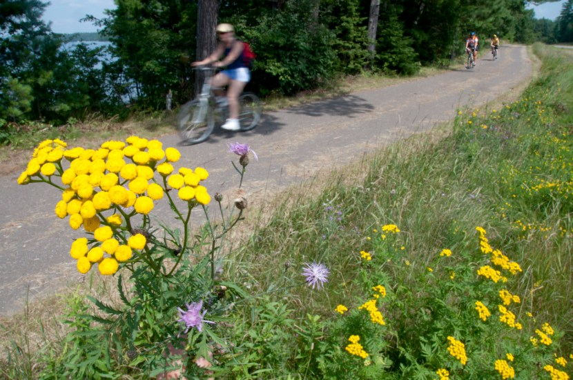 people riding bikes on trail past lake and flowers in forground