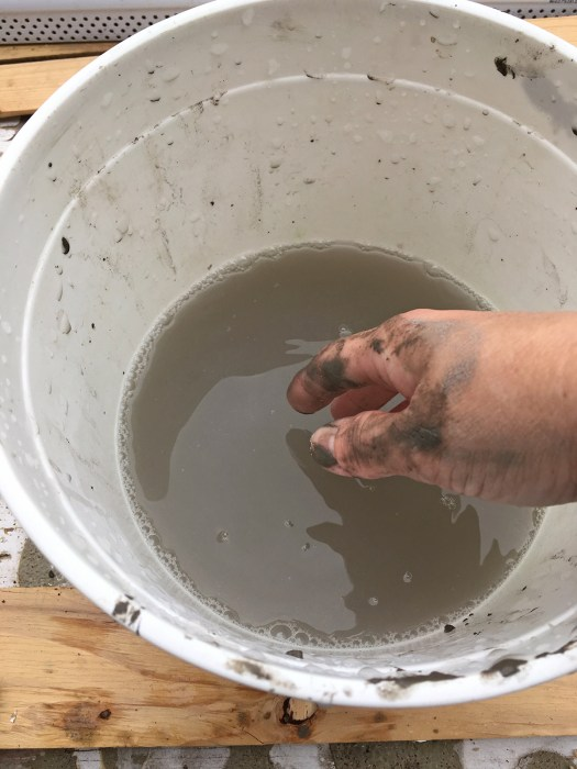 Bucket of Water for Smoothing Cement Skimcoat