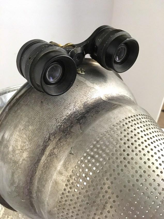 binocular eyes for junk turkey