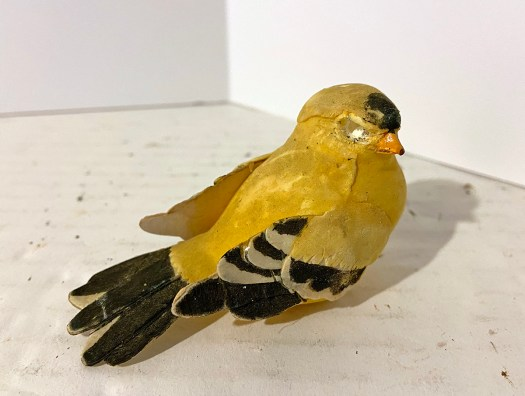 decorative flocked finch with eyes removed
