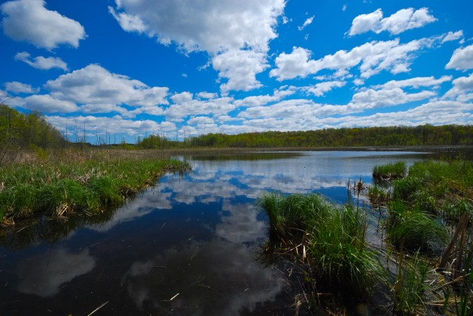 Butler Lake & Flynn's Spring Wisconsin State Natural Area #257 Sheboygan County