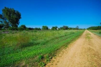 Trail Prairie
