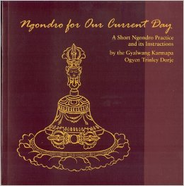 Ngondro for Our Current Day- A Short Ngondro Practice and It's Instructions by The 17'th Karmapa, Ogyen Trinley Dorje