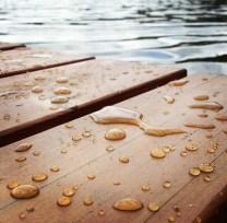 Water Days