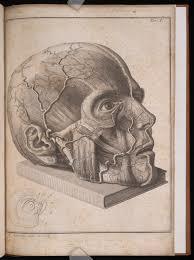 digital history of the Enlightenment | medicine