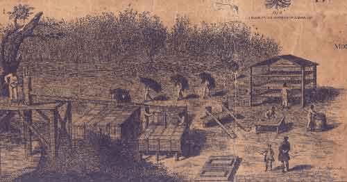 digital African-American history | plantations