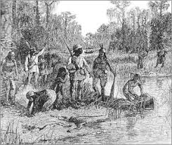digital history of Native Americans   Seminole tribe