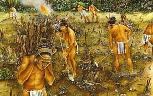 Maya | economy