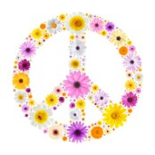 stock-photo-20218630-peace-symbol-made-from-flowers