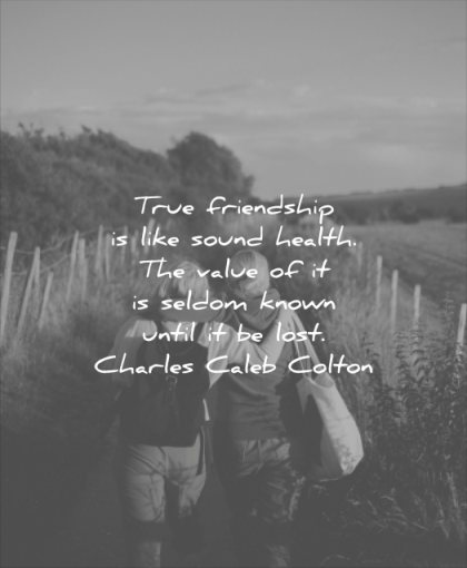 Friend Lost Quote : friend, quote, Friendship, Quotes, Friends)