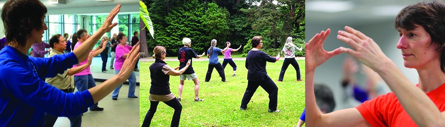 Seattle, Capitol Hill, Renton, Burien, West Seattle, Tai Chi, Qigong