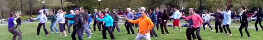 Seattle World Tai Chi Day 2014