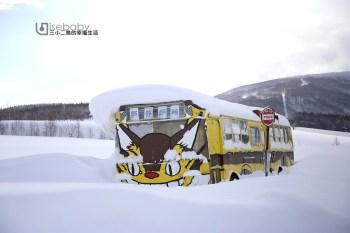 北海道IG拍照打卡點。一起來深川龍貓峠搭龍貓公車吧!