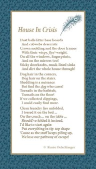 House-In-Crisis, house cleaning, laundry, dust balls, dog hair, messiness, poetry, light verse, poem