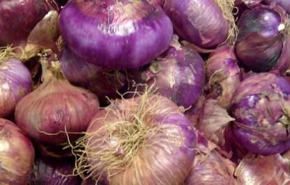 cipolle acquaviva viola dolci