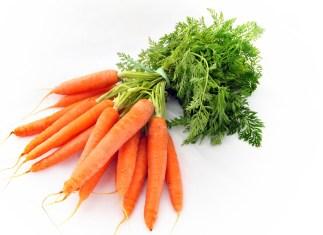 carote bio semi online