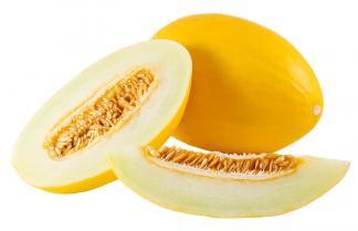melone giallo inverno semi online piantare
