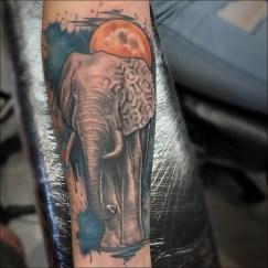 Arty elephant