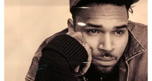 Chris Brown Charged To Court Over Owning A Pet Monkey
