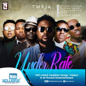 TM9JA - Underrate (Remix) ft. Sound Sultan, Small Doctor, Chinko Ekun, Qdot & Zlatan