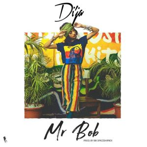 Di'Ja - Mr Bob