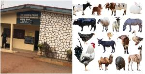 Edo Police To Do Sacrifice With List Of Animals For Detaining Chief Priest