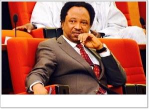 Shehu Sanni Reacts To The Arrest Of 80 Nigerians By FBI