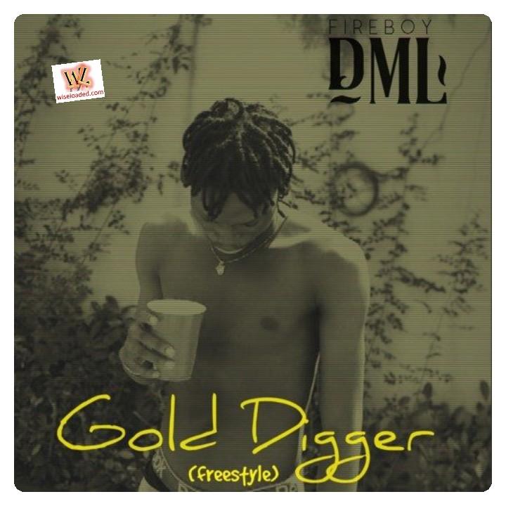 Fireboy DML- Gold Digger (Freestyle)