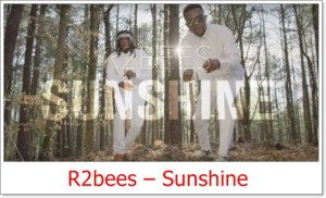 R2bees - Sunshine Video
