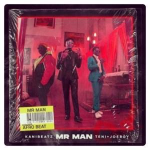 Teni x Kani Beatz x Joeboy - Mr Man
