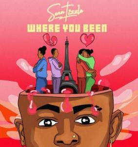 Sean Tizzle - Where You Been (EP) (Mp3 Download)