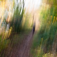 Passeggiate impressioniste