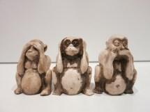 Monkey Wise Monkeys