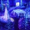 【決定版】クリスマスイルミネーション2016東京の穴場スポット10選