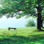GWぼっちの一人暮らしにおすすめの有意義な過ごし方とは?
