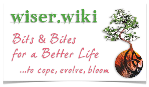 wiser_wiki_promo_card_500x295_v1