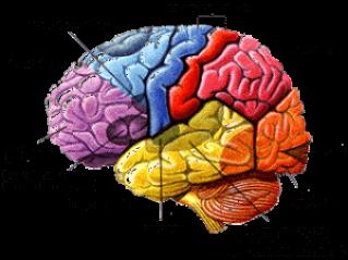 AstroWellbeing case study: Schizophrenia