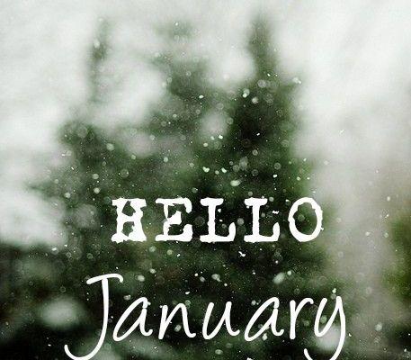 ahoj ledne, leden, novy rok