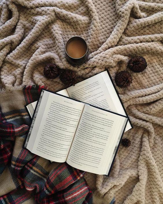 cozy book
