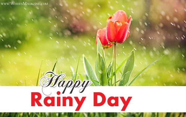 Happy Rainy Day Wishes | Latest Rainy Day Messages