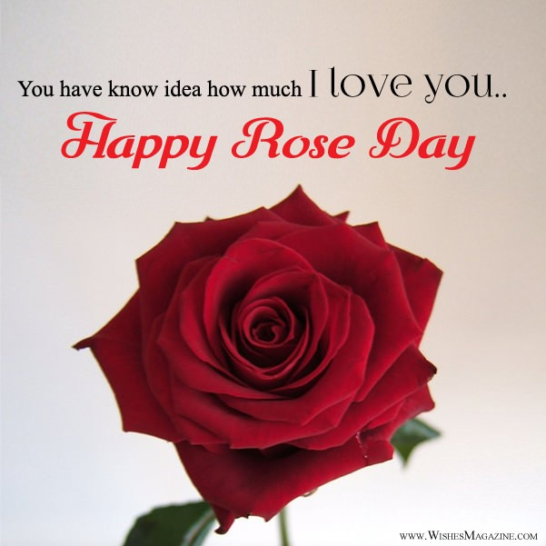 Rose Day Card With I Love You Message