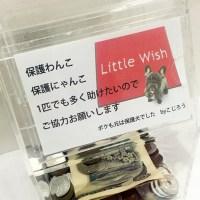 Little Wishの取り組み