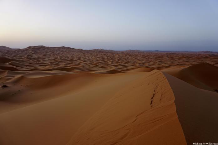 View over the sand dune desert