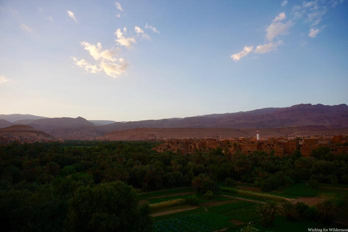 View of oasis in Morocco