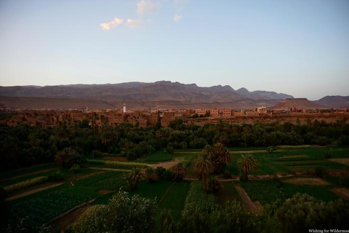 View of oasis Morocco