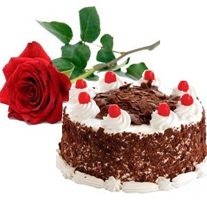 Combo gift cake flower wishing shop combo gift cake flower negle Images